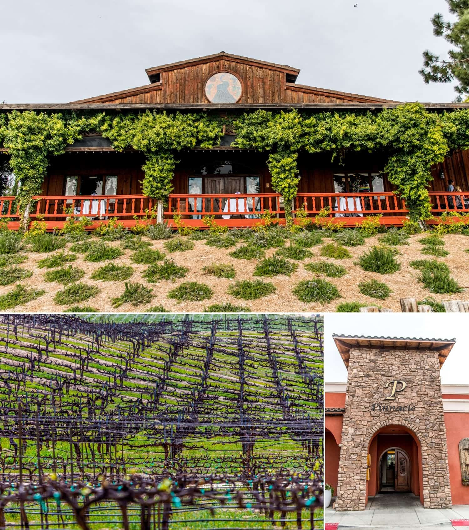 Photograph of Falkner Winery in Temecula California and the Pinacle Room