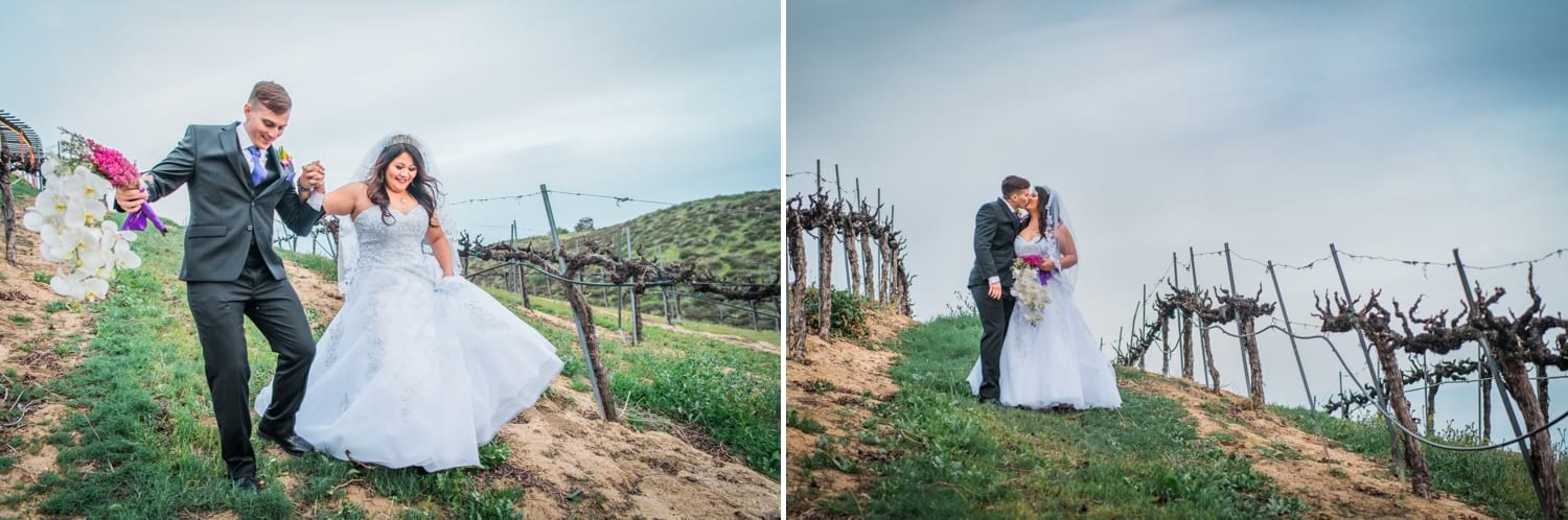 Bride and groom walking between grape vines at a winery.