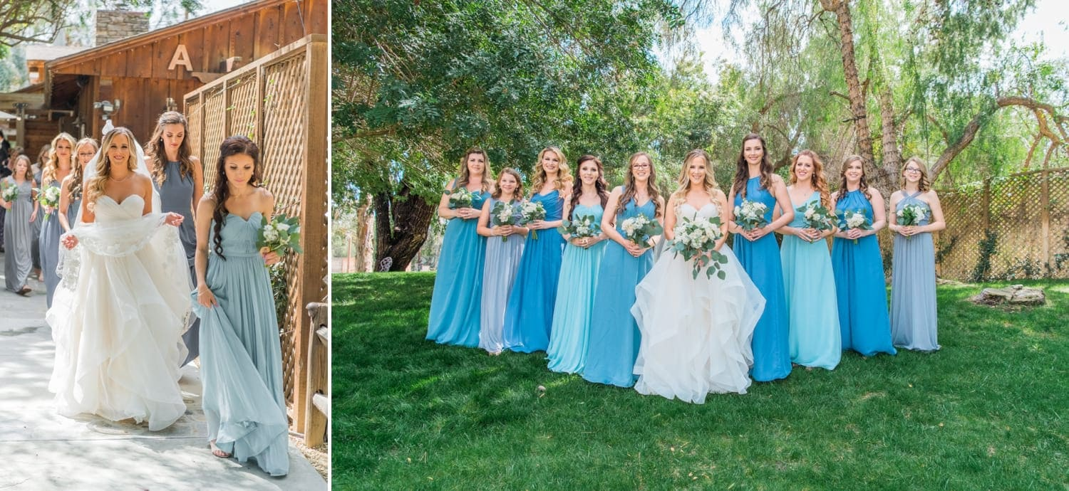 Bride and her bridesmaids.