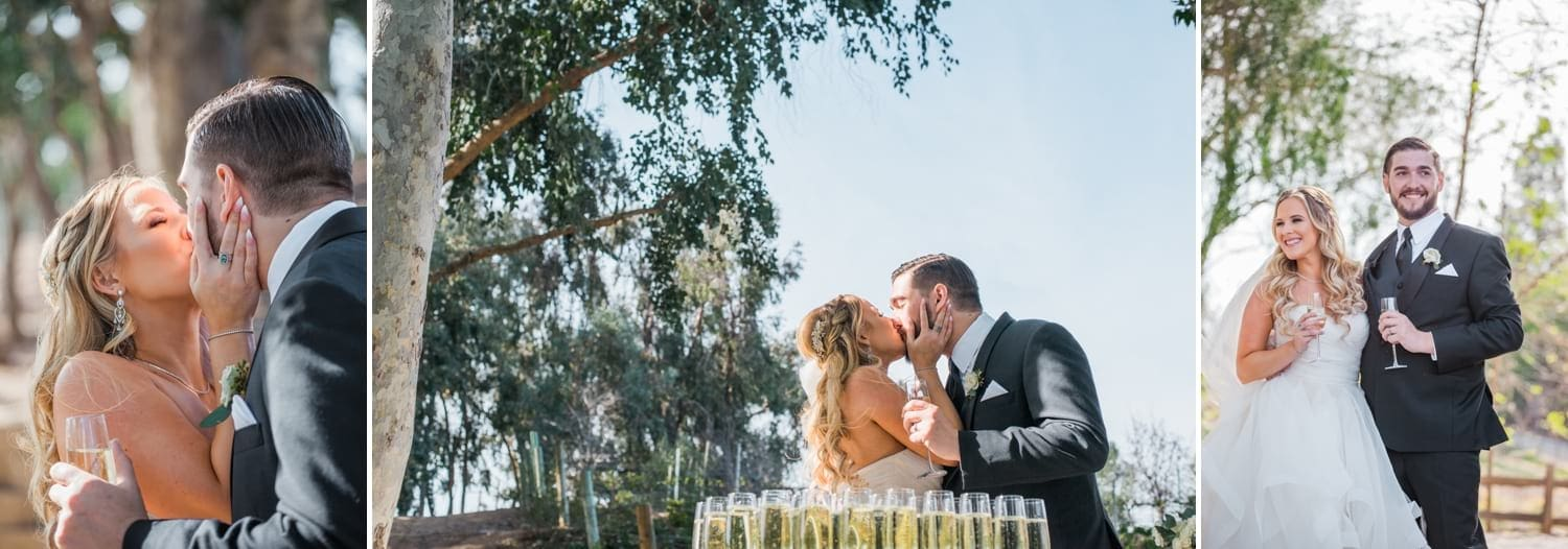 Bride and groom kissing and drinking champagne after ceremony.