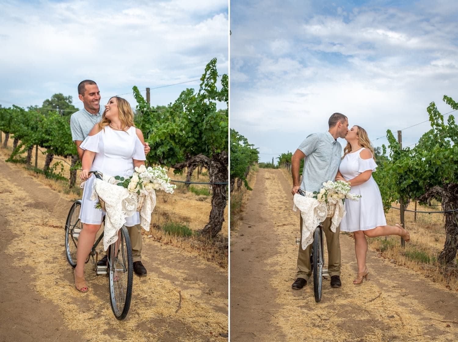 Engagement photos on a antique bicycle in the vines at a winery.