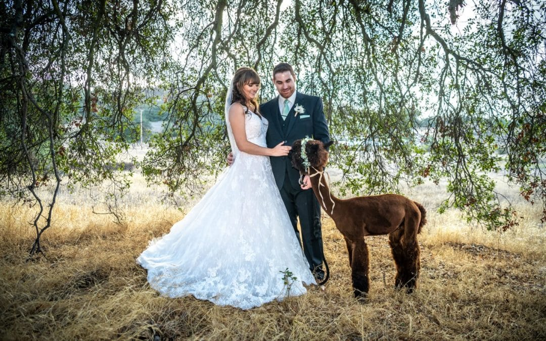 Danielle + Stephen :: Small Farm Wedding With Big Personality:: Forever And Always Farm
