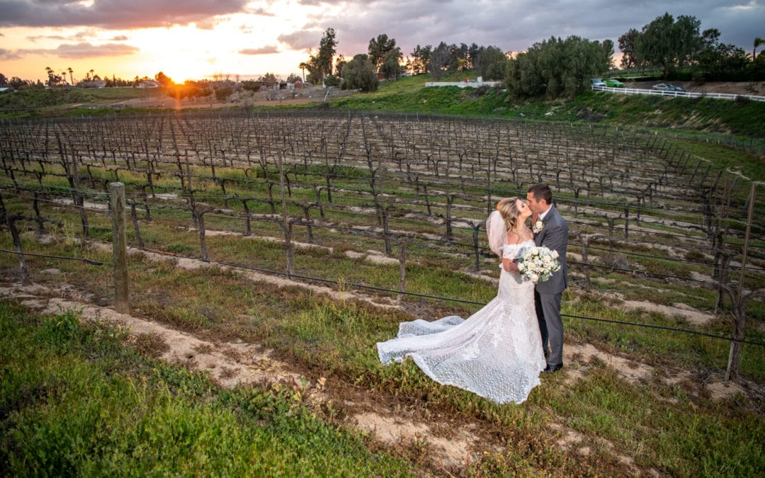 Michelle + Nick :: Romantic Blush Wedding At Wilson Creek Winery
