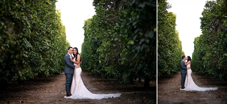 Bride and groom in a orange grove in Temecula, CA.