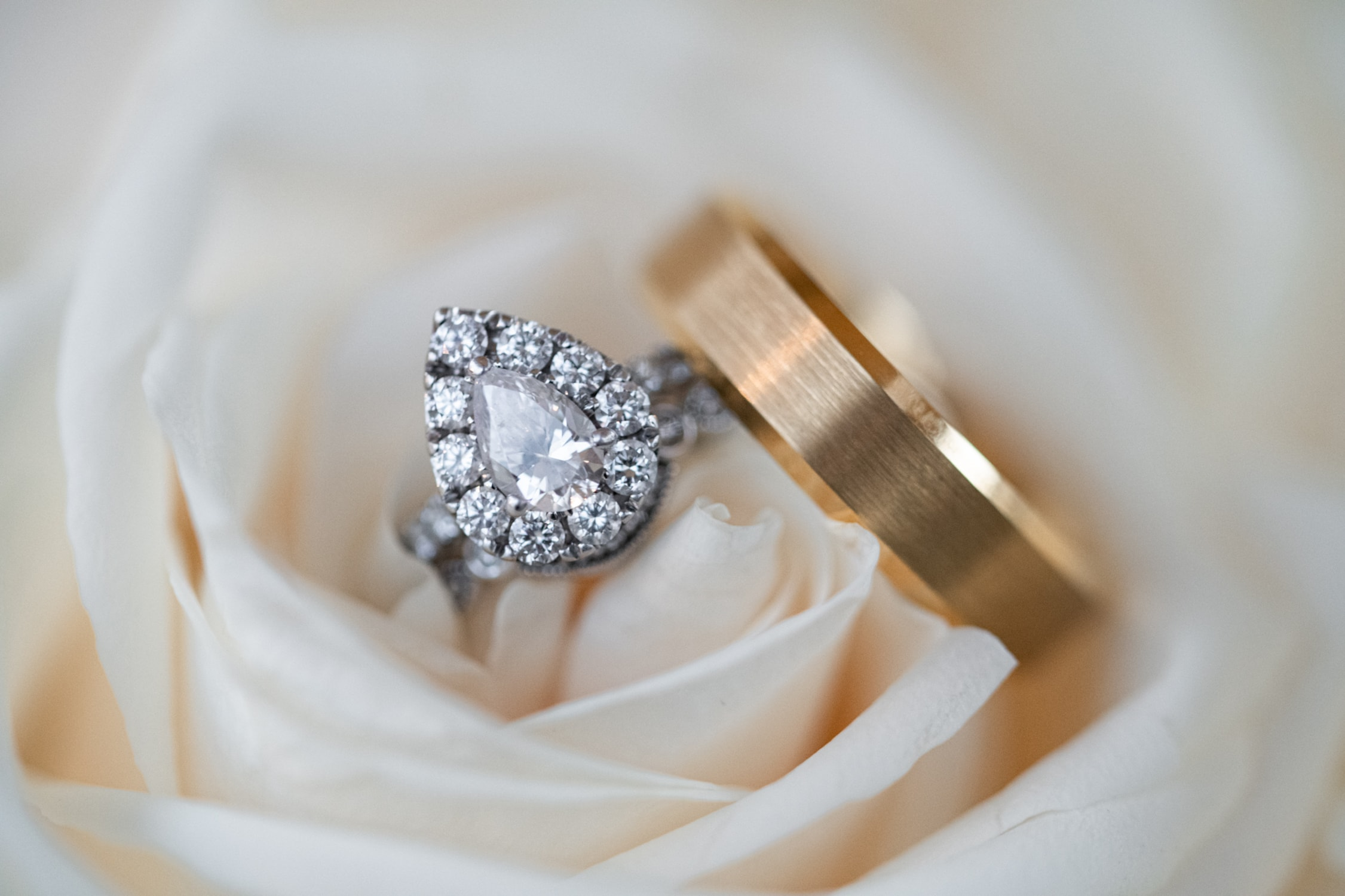 Close up photograph of a couples wedding rings in a white rose.