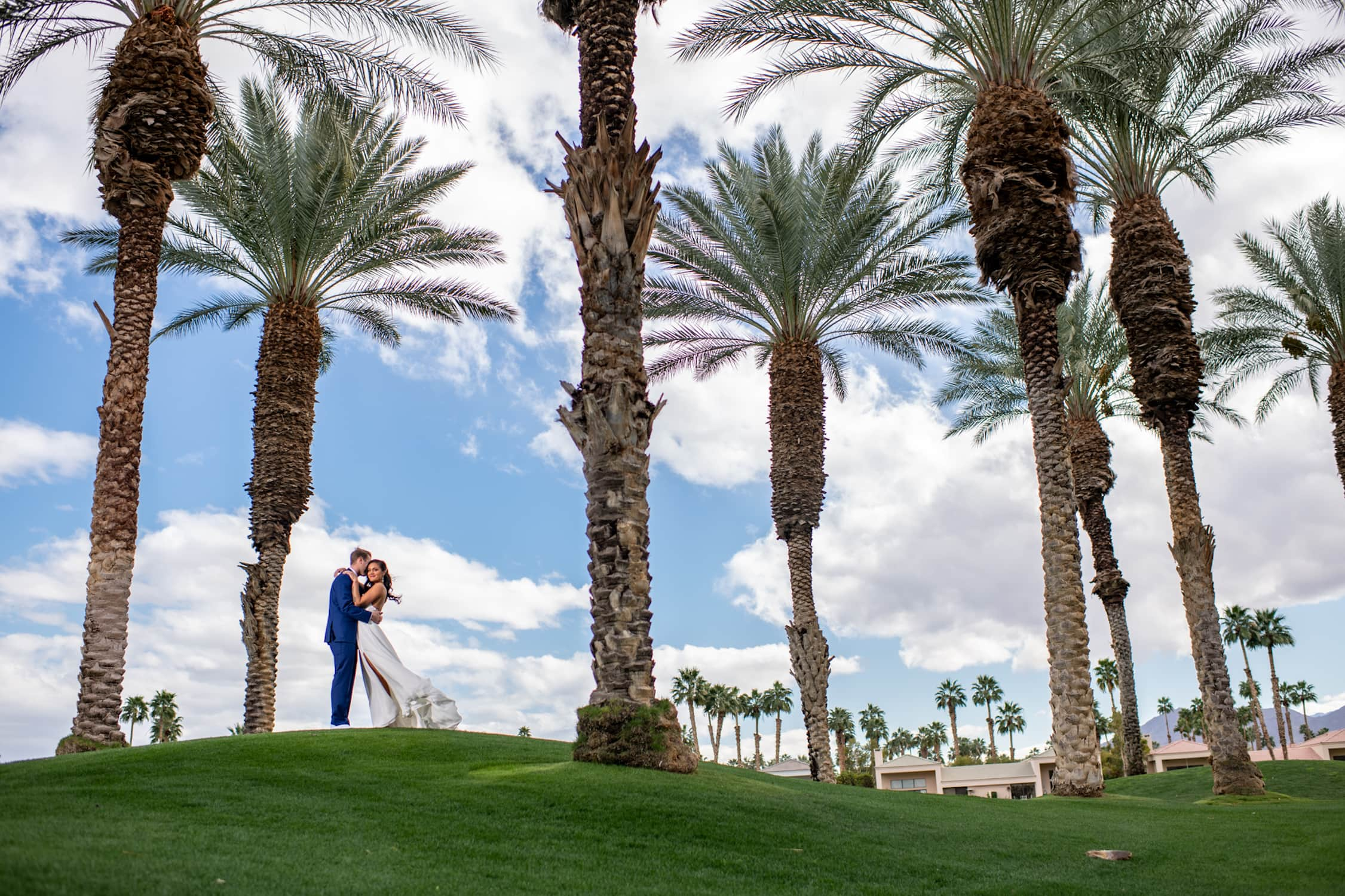 Bride and groom embracing beneath palm trees at the PGA West in Palm Springs.