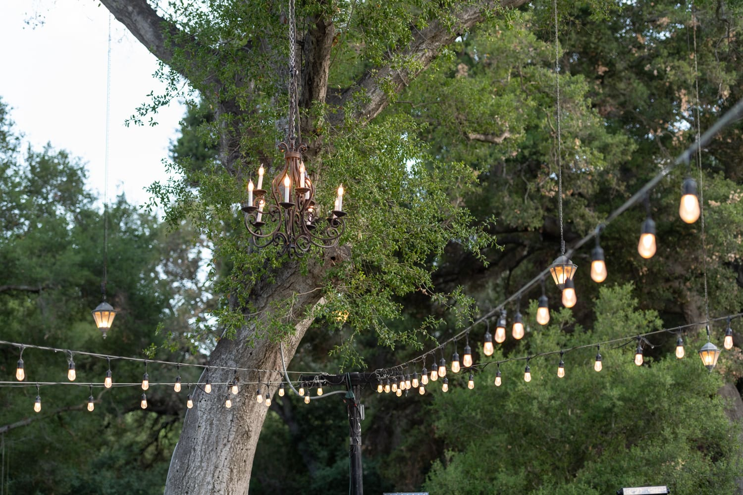Chandelier and bistro lights at The Stone House